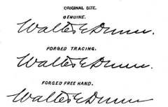 Is This Will a Forgery? How to Tell a Forged Will