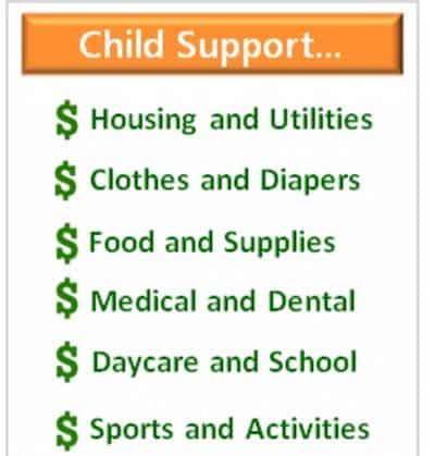 what is child support for